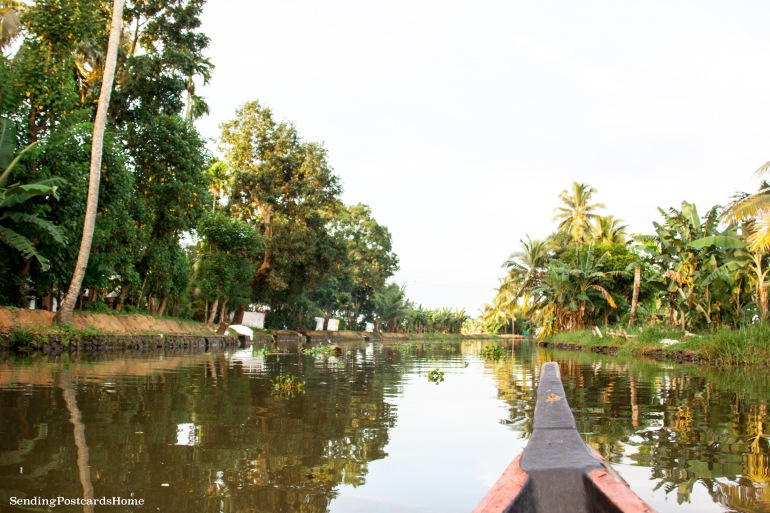 Alleppey, Kerala, India - Sending Postcards Home 12