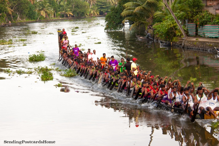 Alleppey, Kerala, India - Sending Postcards Home 16