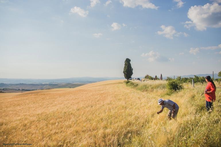 Asciano, Tuscany, Italy - Sunset view, Travel blog 11