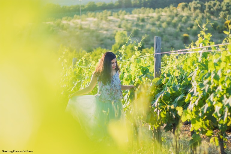 Chianti, Tuscany, Italy - Tuscan Villa, Sunset View, Vineyards- Travel Blog 7